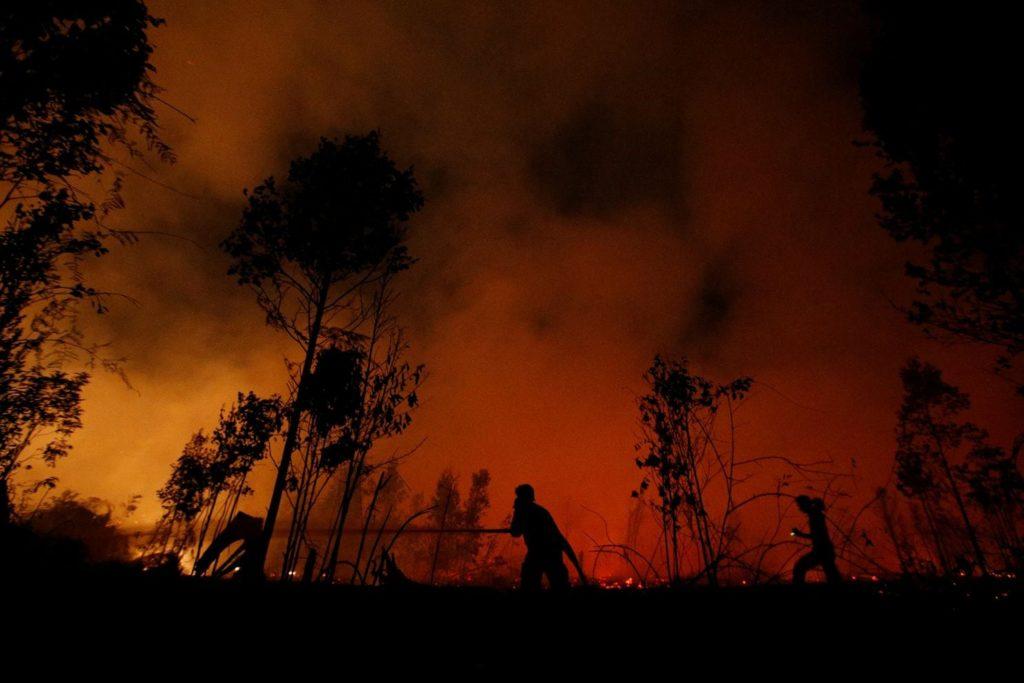 Ciemno, w tle pożar dżungli gaszony przez niewyraźnie postacie strażaków.