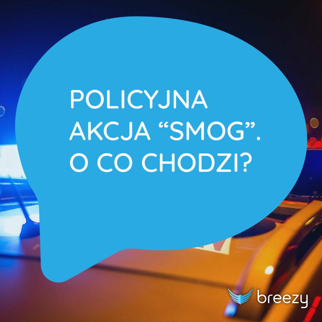 Policyjna akcja smog